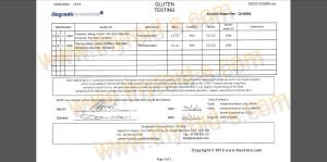 Gluten Test Report